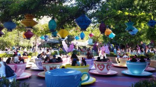 My favorite ride in the world! The Teacups!